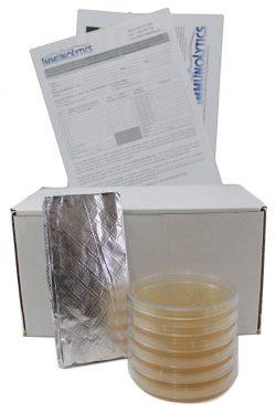 ImmunoLytics Mold Test Kits