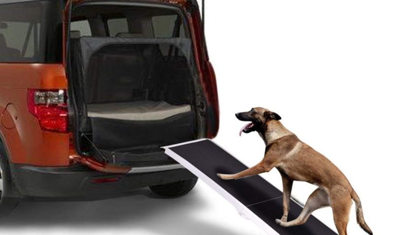 Goplus Dog Ramps for Car