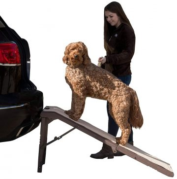 Pet Gear Dog Ramps for Car