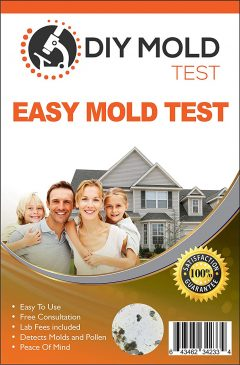 Mold Inspection Network